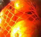 Nahaufnahme von Mandarinen in einem Netz