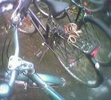 Nebeneinander abgestellte Fahrräder